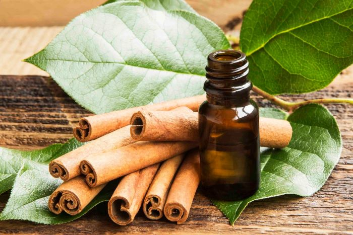 cinnamon_leaf_essential_oil